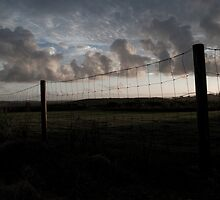 Fence by A.David Holloway