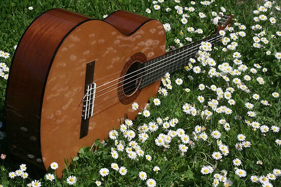 Chloe's Guitar at Springtime by Pamela Jayne Smith