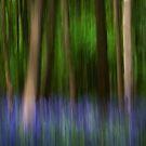 Bluebell impressionism! by Carole Stevens