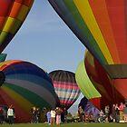 Colorado balloon festival by Luann wilslef