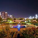 My Local Park by Joseph Najm