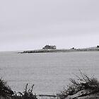 abandoned island by irisphotography