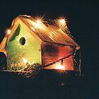 night birdhouse by irisphotography