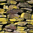 Rock Wall Detail by deltagphoto
