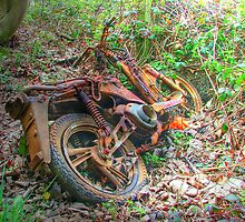 The Funky Moped - Aka - Jasper Carrot !! by Colin  Williams Photography