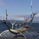 Sun Voyager by Dean  Swinfield