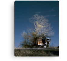 Truck & Tree Canvas Print