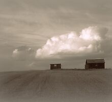 Prairie Afternoon by Leanna Lomanski