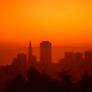 Dusk in SF. by Roc Ahrensdorf