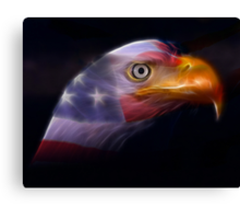Land of the Free... Canvas Print