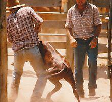 Cowboys At Work © Vicki Ferrari by Vicki Ferrari