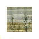 Landscape II... by Julian Escardo