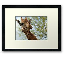 Would You Like Some? Framed Print