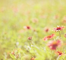 Wild About Wildflowers by MikaelaJoy