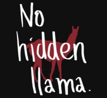 No hidden llama by Tabita Harvey