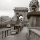 Crossing the Chain bridge by zumi