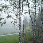 Misty May Evening by Ritva Ikonen