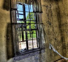 Widow's Window by Joel Hall