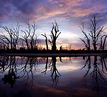 Backwater Sunrise by Steve Chapple