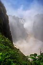 Victoria Falls, view of the Cauldron. Zimbabwe, Africa. by photosecosse /barbara jones