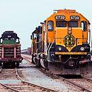 Trains - Size Matters by Buckwhite