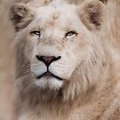White Lion by Natalie Manuel