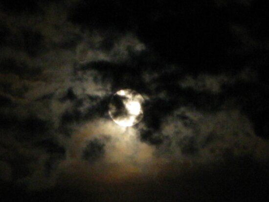Spooky Night by Tammy F