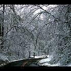 Snowy Path by BigPaganJames