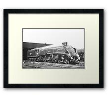 "A4 Class Pacific ""Silver Fox"" Framed Print"