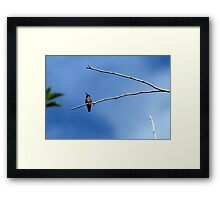 Big world from a small point of View Framed Print