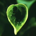 Lush Green Heart  by MelanieD