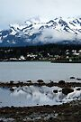 Haines at Dusk ~ Alaska by Barbara Burkhardt