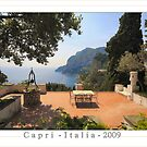 Love and Capri by John44