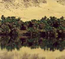 Nile Reflection by Alison Badgery