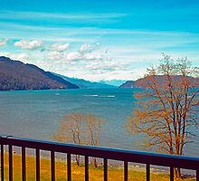 Springtime, Harrison Hot Springs, BC 11 by Priscilla Turner