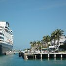 Ships Docked in Key West by Margaret  Shark