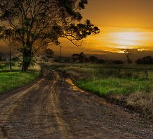 The road less traveled by Rodney Trenchard