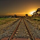 One way track by Rodney Trenchard