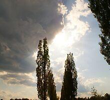 """""""small cloud"""" by Kulfon"""