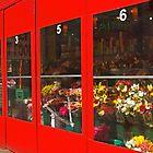 Corner store in New York city by Zal Lazkowicz