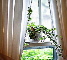 Ivy & Bird by janetlee