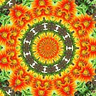 Kaleidoscopic Orange Gazanias by taiche
