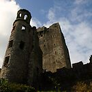 "Blarney Castle Ireland home of the ""Blarney Stone"" by terryjackson"