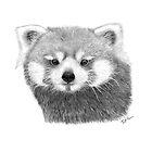 Red Panda by rosannamaria
