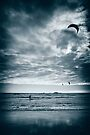 Kite Surfing by Dean Mullin