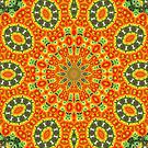 Kaleidoscope of Bold Orange Gazanias  by taiche