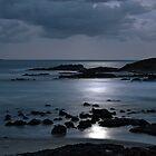 Sawtell Beach Under Moonlight by Wendy  Meder