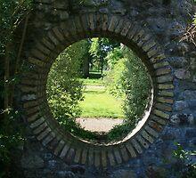 Birr Castle Gardens 2 by John Quinn