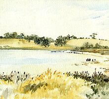 Mallee Sanctuary by liljo