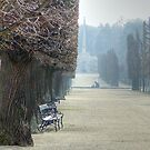 Bench at Schnbrunn Palace, Vienna by daynov